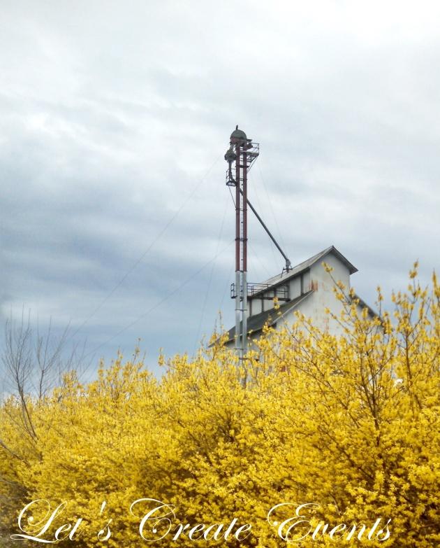 Spring Refresh011